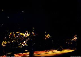 Grateful Dead - February 5, 1989